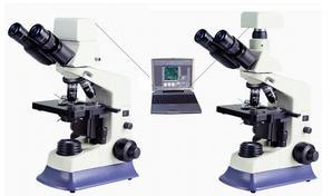 数码生物摄影显微镜图片