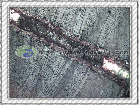 国产金相显微镜的效果图
