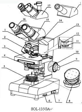 sol-135g普通生物显微镜说明书(一)