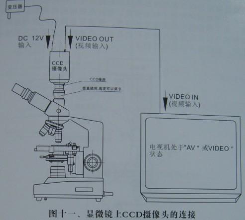 5, 微生物显微镜应放置在阴凉,干燥的地方,使用完后需切断电源